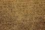 Picture of Plain Natural Coir Doormat 35x60cm
